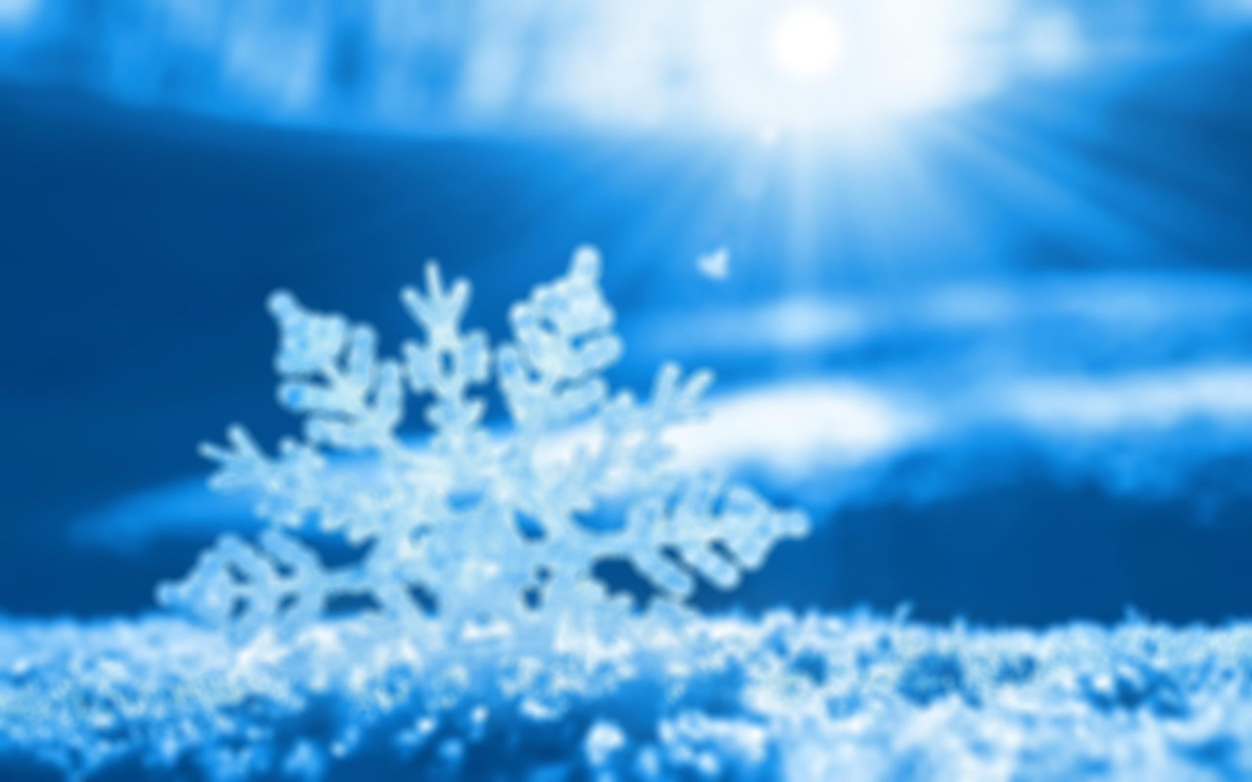 TIEFKÜHL-KOFFER 0/-20 °C 655029 snow crystal 1